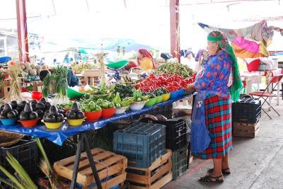 野外市場一例